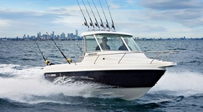 Haines Hunter 650 R-SERIES